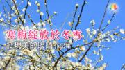 0228-澈見藝廊-F