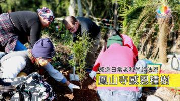 2020-0202鳳山寺後山種樹念師恩ENG-推圖-繁體-官網