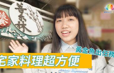 菩禾林蔬食《 黃金魚出任務~宅家料理超方便 》