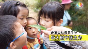 20201101台中青少班向大樹學習ENG-推圖-繁體-官網
