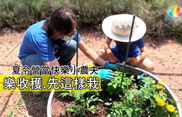 《 夏令營當快樂小農夫 樂收穫先這樣栽 》–澈見網路電視台