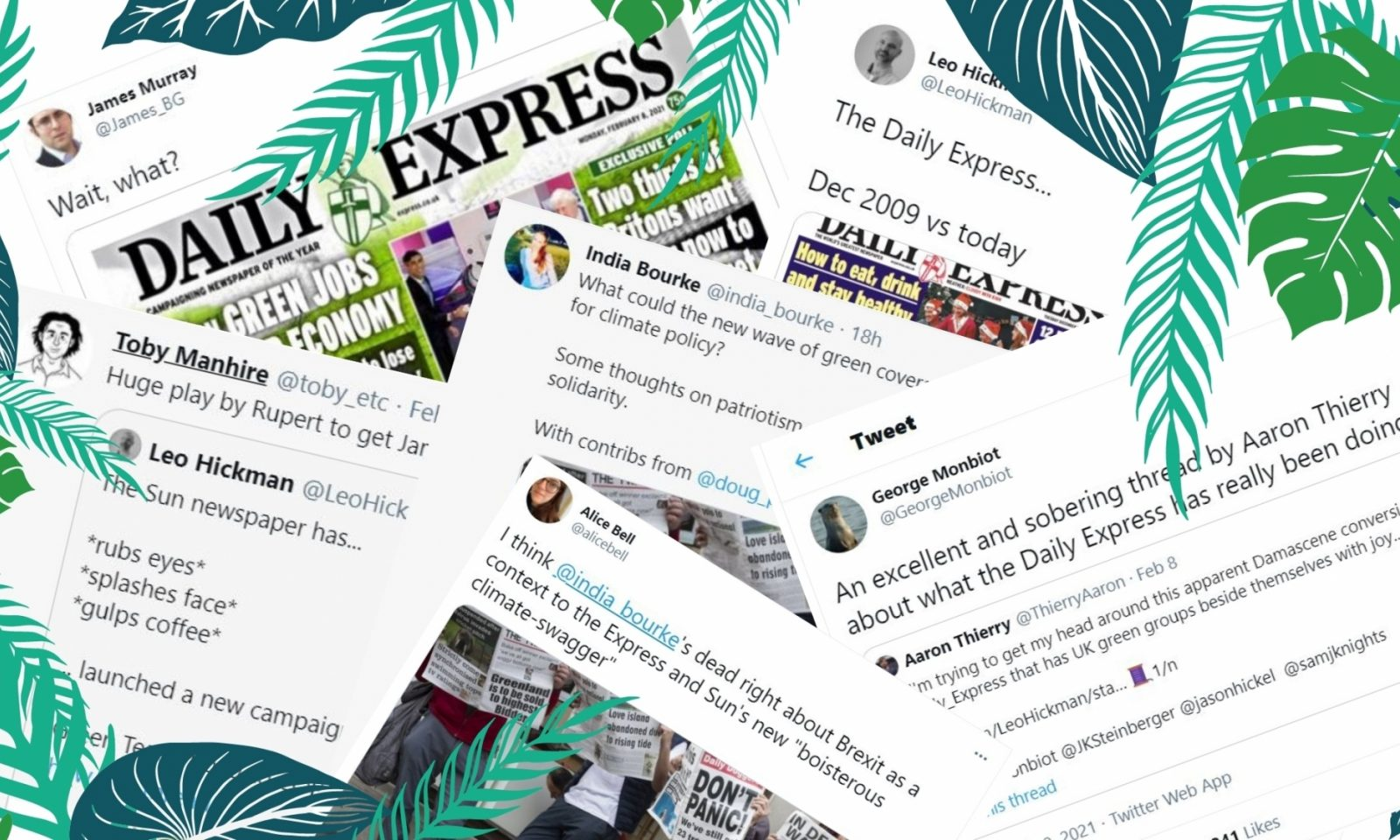 Daily Express Blog Piece