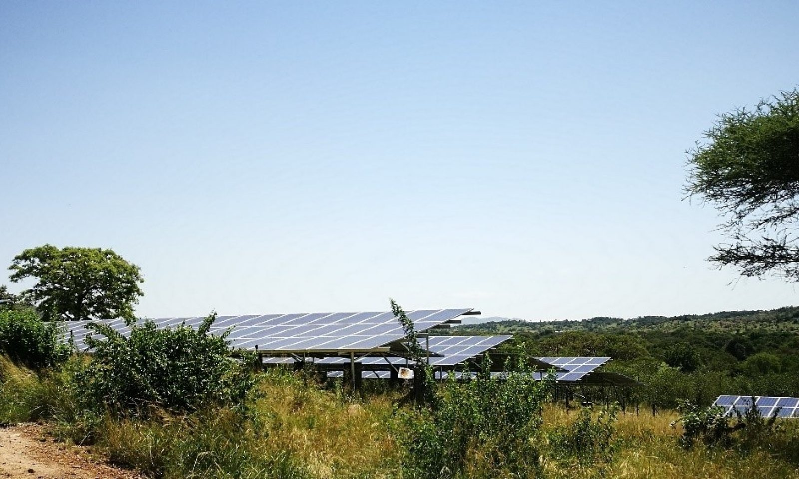 Faru Faru Photovoltaic Panels