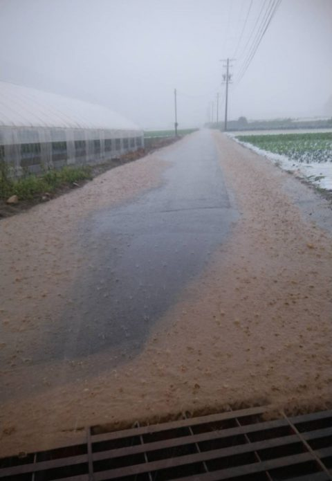 長野県川上村豪雨被害