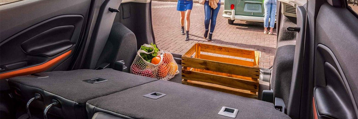 2018 Ford EcoSport Cargo