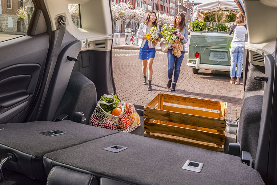 2019 Ford EcoSport Cargo