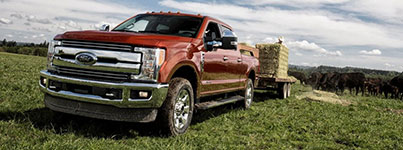 2017 Ford F-250 SRW Rugged Towing & Hauling