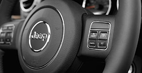 2017 Jeep Wrangler Unlimited Steering Wheel Controls