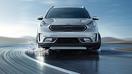 2017 Kia Niro Vehicle Stability Management