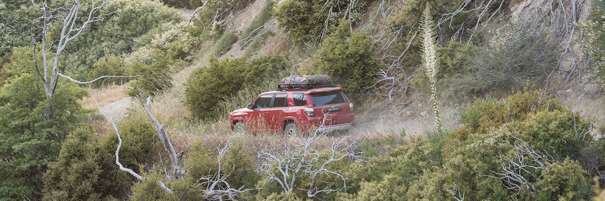 2019 Toyota 4Runner Off Road Premium