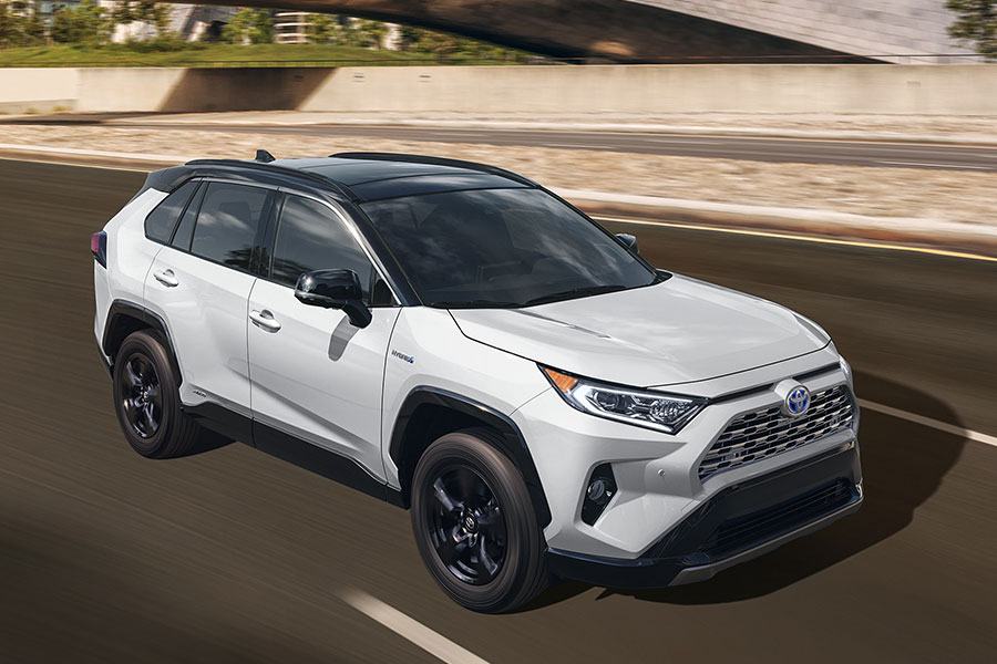 2019 Toyota RAV4 on the Road