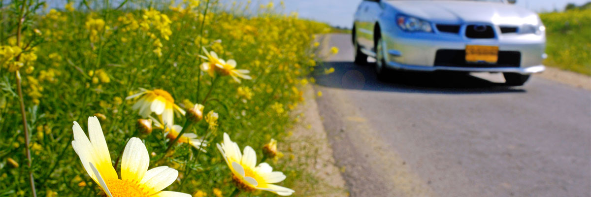 Top Things to Do For Your Car in the Spring