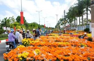 Top 10 loại hoa được người Việt ưa chuộng nhất dịp Tết