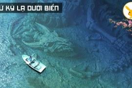 8 Phát Hiện Kinh Hoàng Dưới Đáy Biển Các Nhà Khoa Học Cũng Bó Tay
