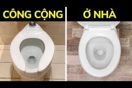 Tại sao bồn cầu vệ sinh công cộng có hình chữ U