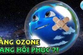 Lỗ Thủng Tầng Ozone Của Trái Đất Đang Thu Hẹp Lại ???? Xem Gì Khoa Học