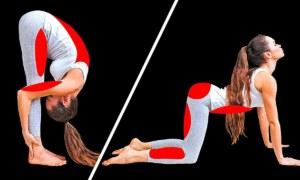 10 Tư Thế Yoga Cơ Bản Sẽ Thay Đổi Cơ Thể Bạn Trong 29 Ngày