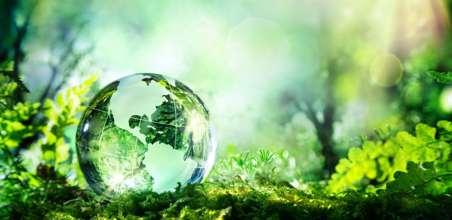 How videoconferencing supports the triple bottom line.glass planet in a forest with sunshine - Usa map