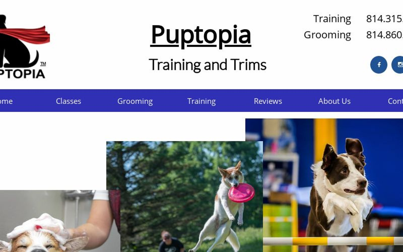 Puptopia Dog Training Erie