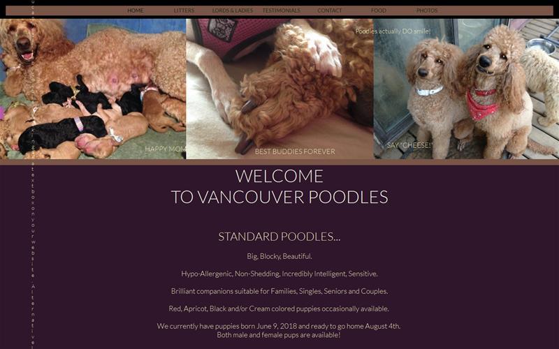 Vancouver Poodles