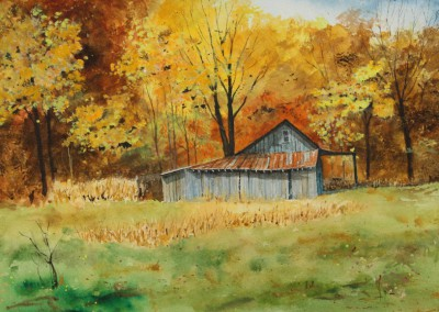"""Shed in Indiana"""
