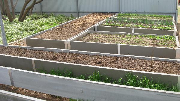 600 mm high raised garden beds