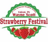 2019 Town of Unicoi Strawberry Festival