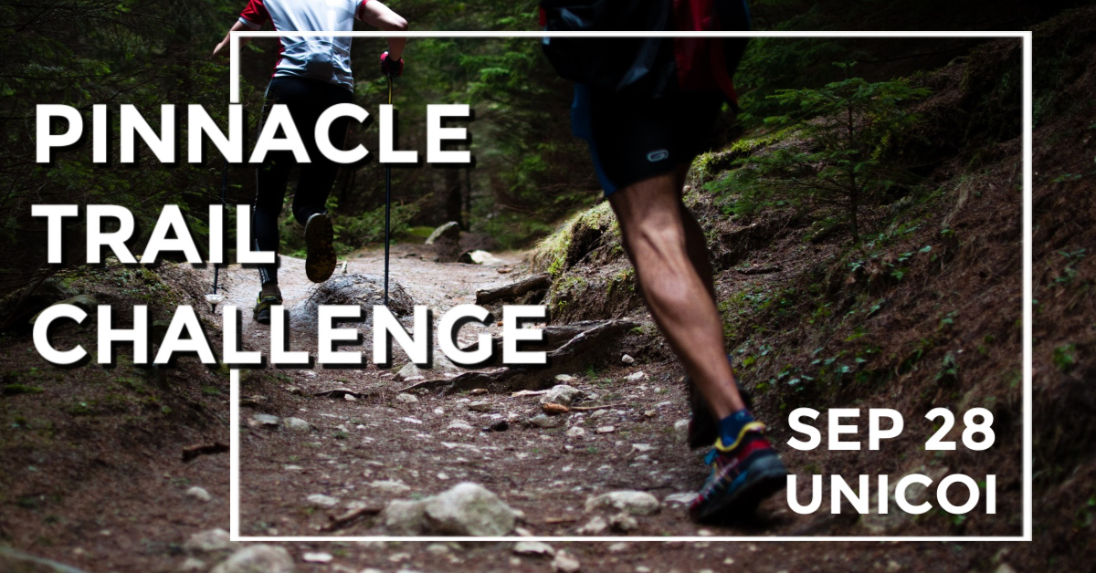 PINNACLE CHALLENGE: BUFFALO MOUNTAIN RUN TO BENEFIT FOOD BANK