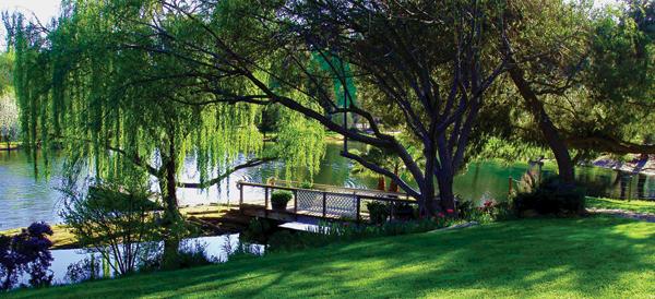 Lake and Lawn