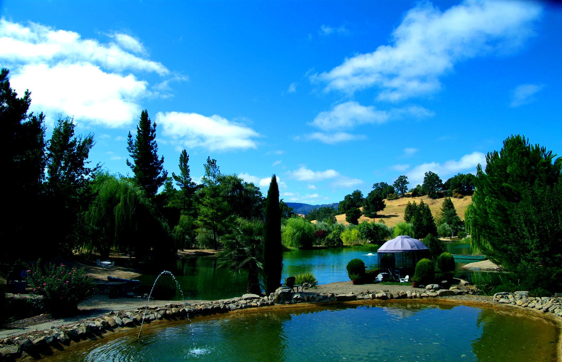 Lake and Pond
