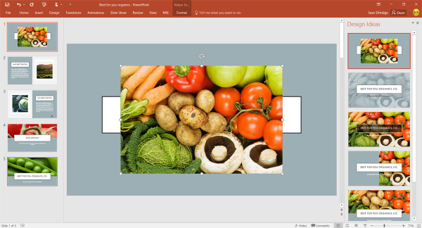 How would you like an image recognition in you PPT presentation? Microsoft office 2016 has just that