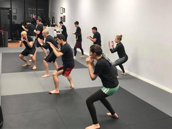 Kickboxing/MMA