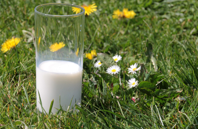 Milk Alliance calls for consistent messaging as new survey shows reduced dairy consumption