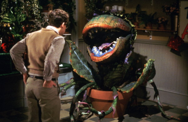 Review A Day: Little Shop of Horrors