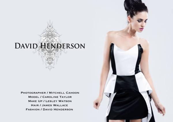 David Henderson Campaign