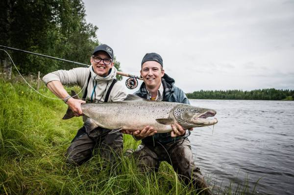 Baltic Salmon