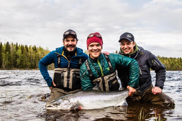 36 pound June Baltic Salmon