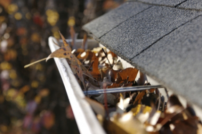 Fall Roofing Maintenance Tips