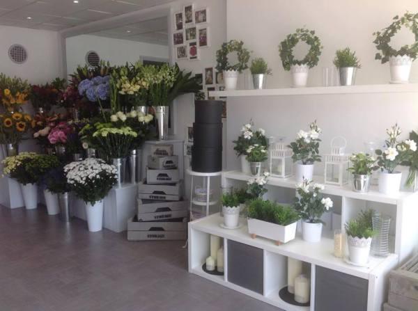 Bromley Bloom Room!