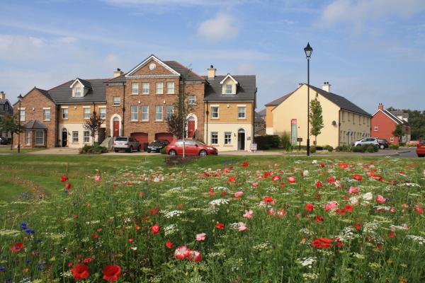 Ballantine Garden Village Lisburn