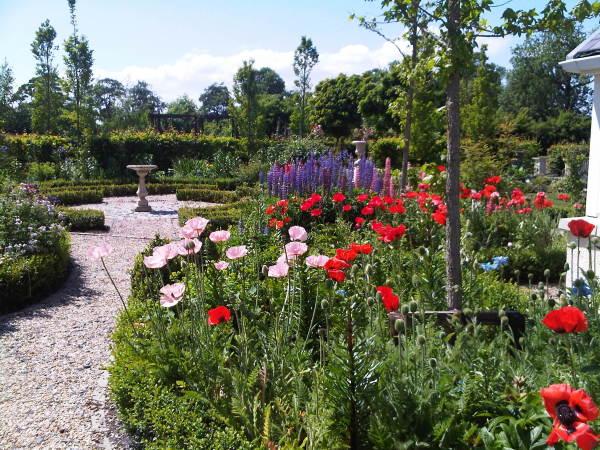 Plants & sort landscaping
