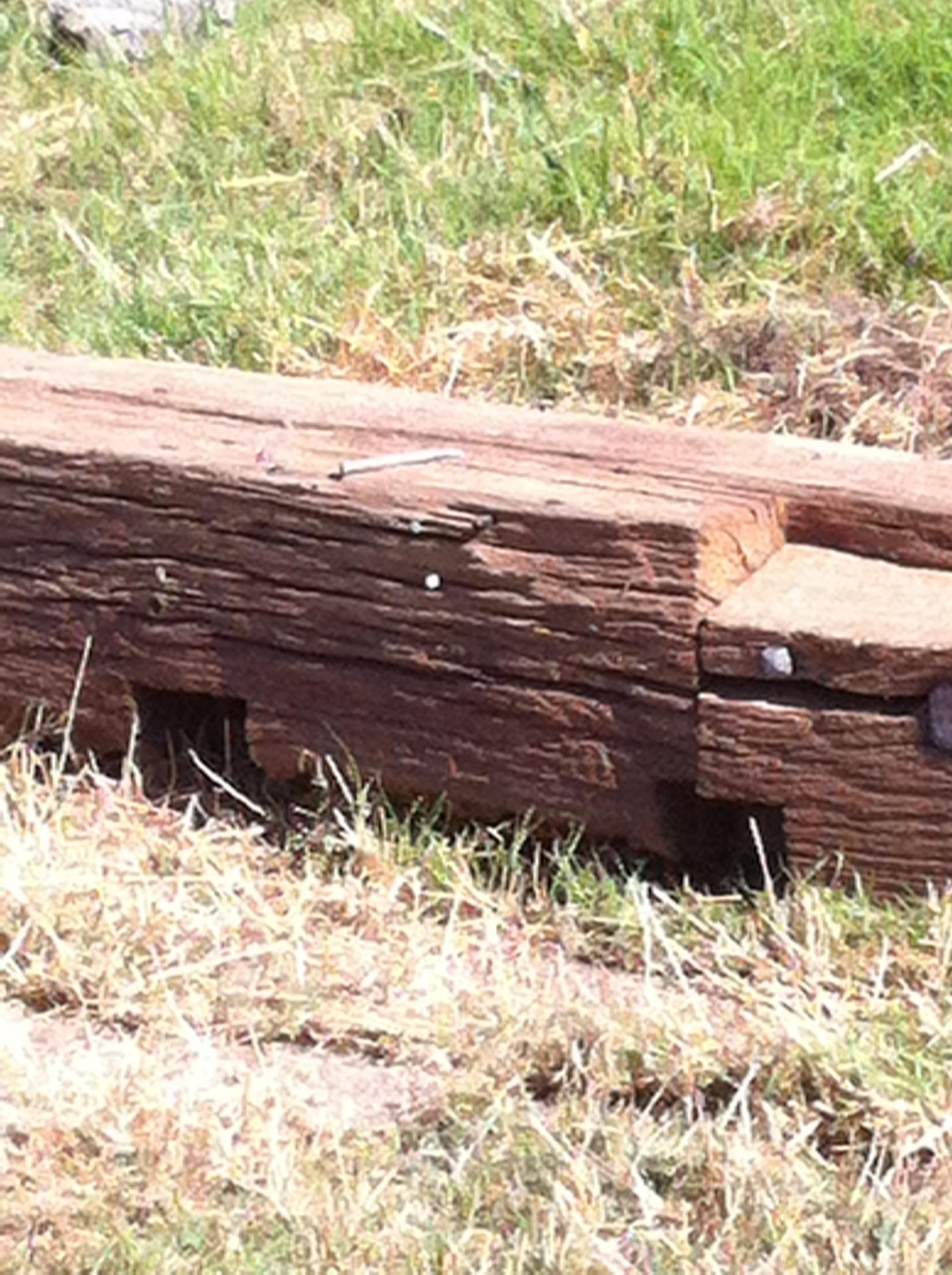Timber and Reclaimed Oak Beams