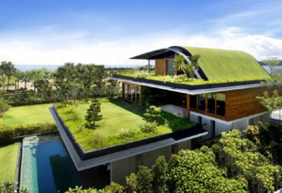 Designing and insuring a green roof