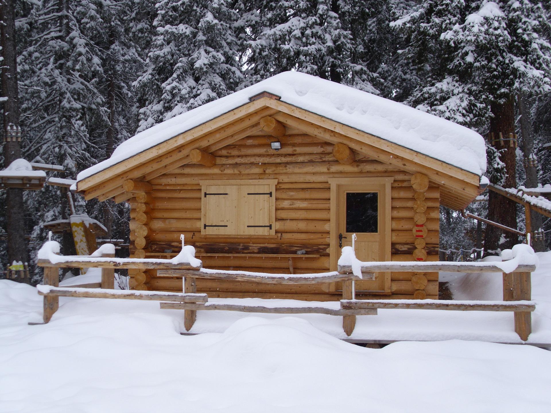 Alpine style Lodge