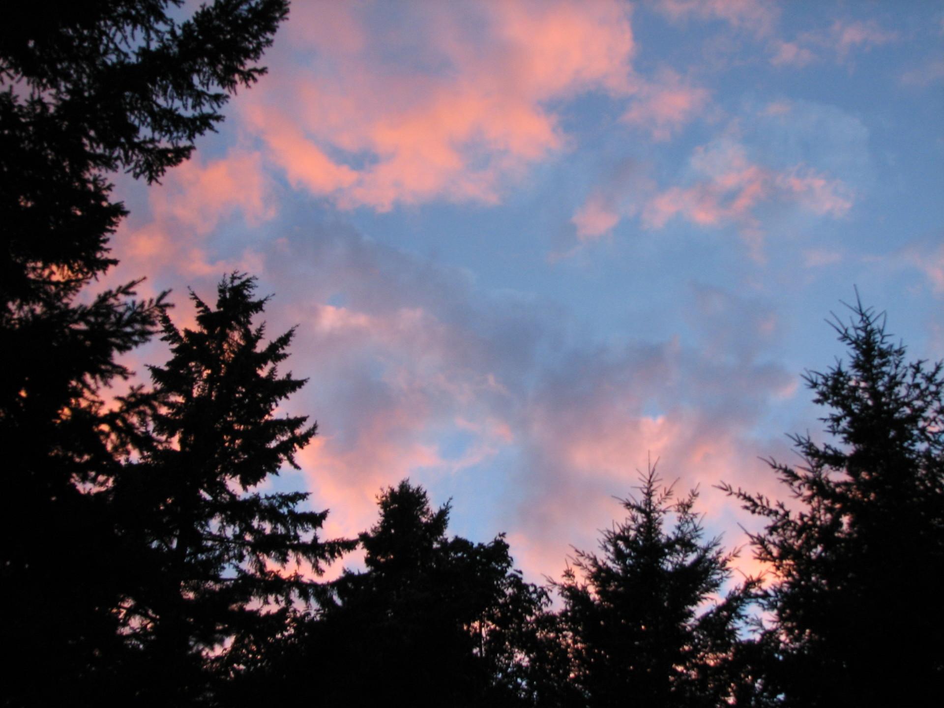 Sunrise on the Olympic Peninsula - Washington State - USA