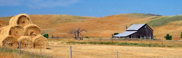 Big Sky Ranch Ministry