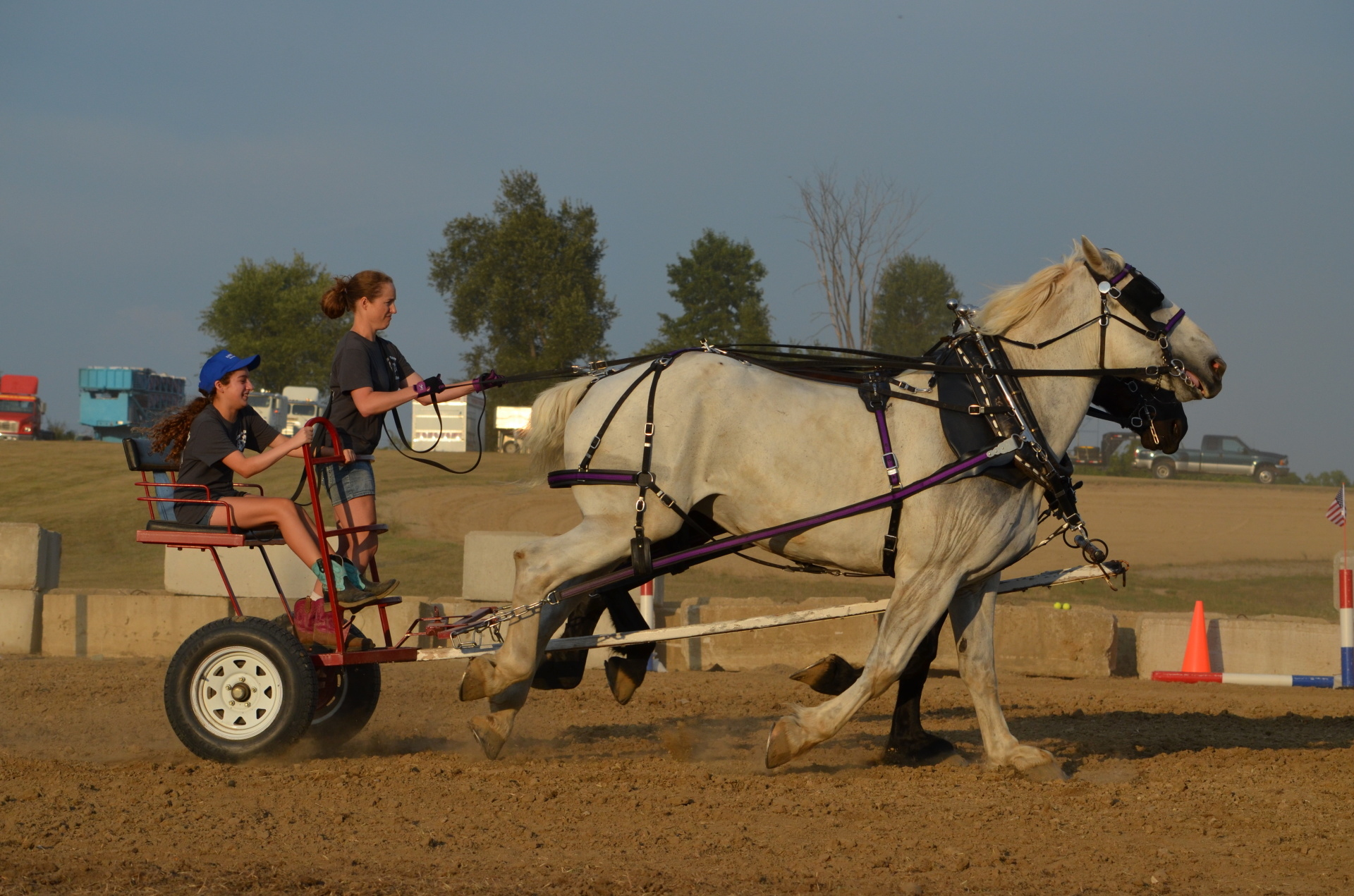 Draft Horse Obstacle Course 2016