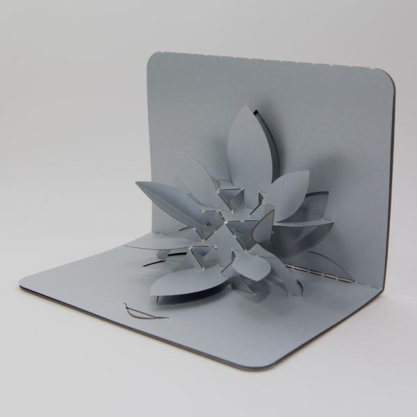 Flower - FoldForm - 3D popup card