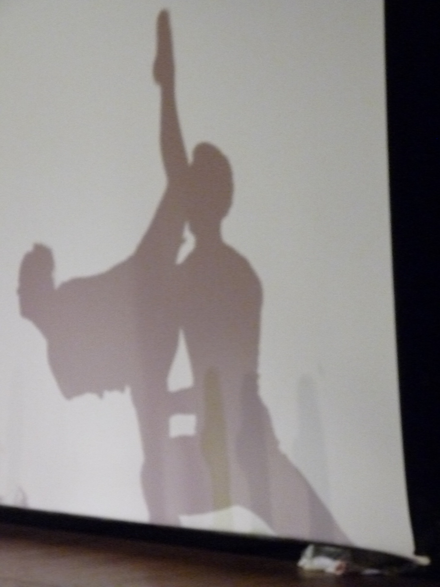 Dancer's Silhouette