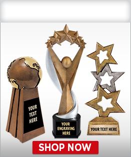 Sculpture Awards/Trophies